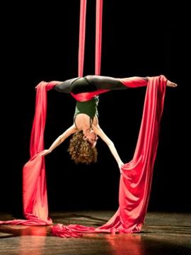 Circo e tessuti
