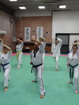 arti marziali: tae kwon do
